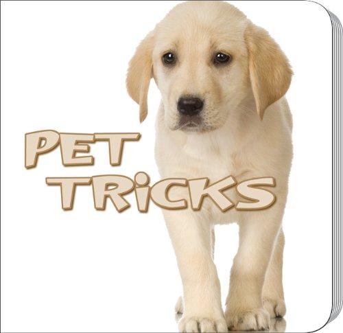 Download Pet Tricks (Rourke Board Books) ebook