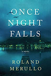 Book Cover: Once Night Falls