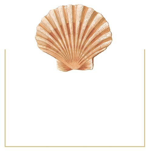Beach Party Place Cards Clambake Nautical Decor No Placecard Holders Needed Seashell 16 PC