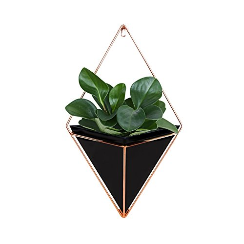Aneil Hanging Planter Vase Air Plant Pot Wall Succulents Decor Container Geometric Characteristic Living Room Decorations (Black, S)