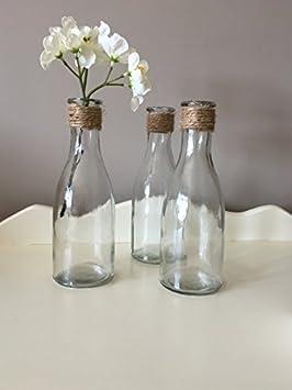 Hunky Dory Gifts Conjunto de 3 floreros de la Botella de Vidrio con el Regalo Superior