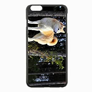 iPhone 6 Plus Black Hardshell Case 5.5inch - dog akita inu stand nature Desin Images Protector Back Cover