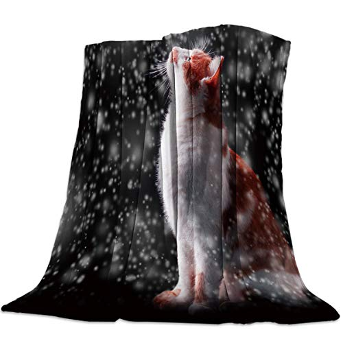 Heart Pain Drifting Snow Cat Romantic Flannel Fleece Throw Blanket All Season Home Decorative Warm Plush Cozy Soft Blankets for Chair/Bed/Couch/Sofa (49