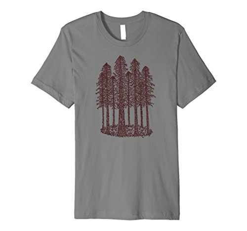 Cathedral Ring Sketch (Coastal Redwood) Graphic T-Shirt ()
