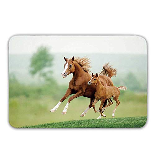 TecBillion Horse Decor Non Slip Rubber Entrance Rug,Running Chestnut Horses Mare and Foal Meadow Scenic Summer Day Outdoors Doormat for Front Door,23.6