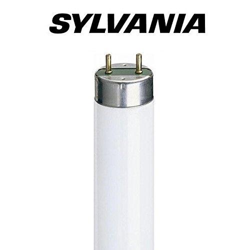 5 x 5ft F58w (58w) T8 Triphosphor Fluorescent Tube Colour: 835 Standard White [35... Sylvania
