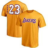 VF Majestic Lebron James Los Angeles Lakers #23 Men's Big & Tall Side Sweep Player T-Shirt