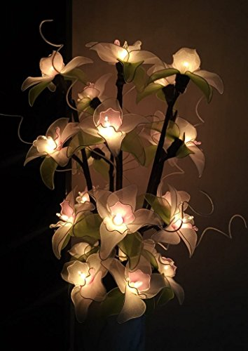 Thai Vintage Handmade 20 White Orchid Flower Fairy Vase/floor/table Lamps, Wedding Party Decor 18-inch/ 1 set By' Thai Decorated by Thai decor