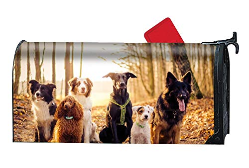 (Hotspot Stylish Animal Dog Border Collie Terrier Australian Shepherd Poodle German Magnetic Mailbox Cover Festival Decorations - 9 x 21 Inches )