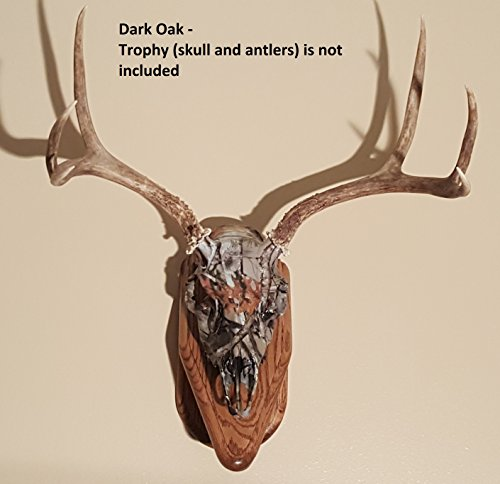 Deer European Skull Mount Wall Pedestal (Dark Oak) - Pedestal Dip