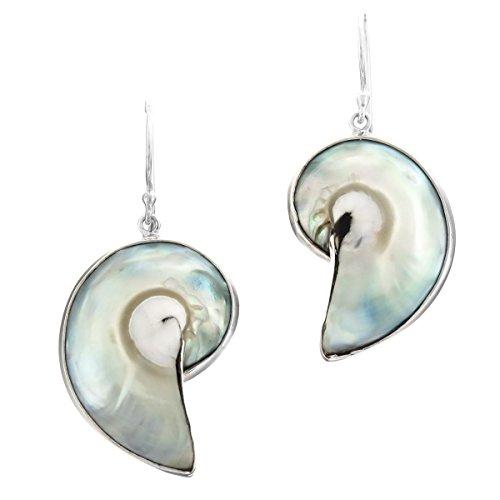 "Blue-Silver-tone Nautilus Ocean Shell 925 Sterling Silver Earrings, 1 1/4"""