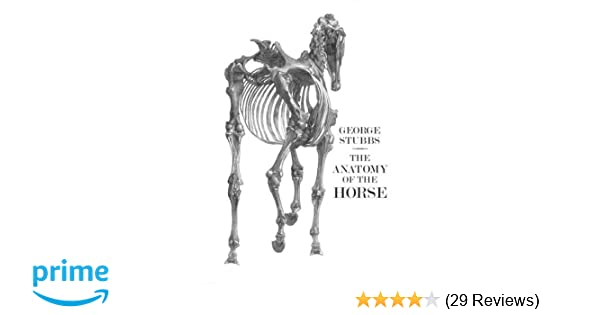 The Anatomy Of The Horse George Stubbs 9781843680031 Amazon