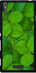 Funda para Sony Xperia T3 - Santa Albahaca Tulsi Verde Menta Le