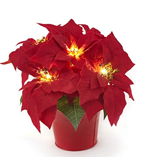 "HOMESEASONS 10"" LED Pre-Lit Red Artificial Poinsettia Plant in Red Iron Pot, Battery Operated Lighted Holiday Floral Arrangement and Christmas Centerpiece"