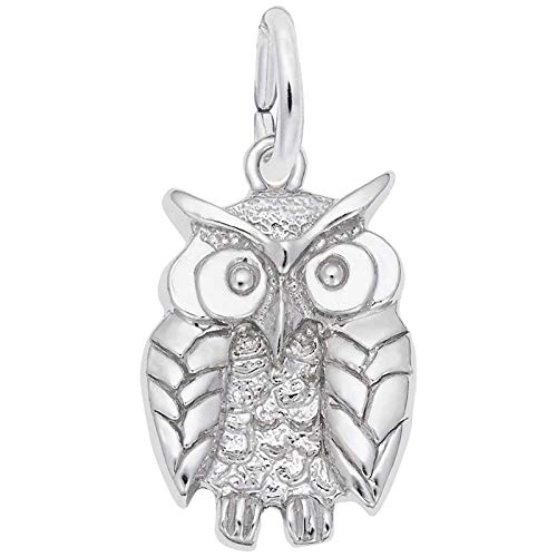 Rembrandt Charm Owl - Rembrandt Wise Owl Charm, 14K White Gold