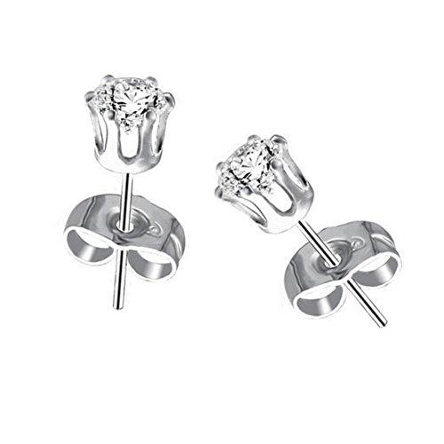 (Freedi 2 Pcs Womens Stainless Steel Stud Earring Pierced Cubic Zirconia Inlaid Silver (5mm))