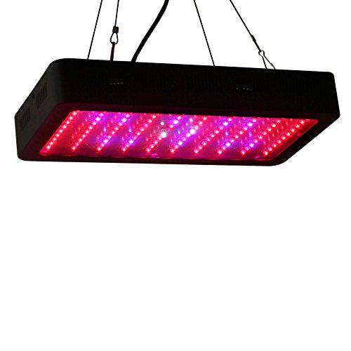 Lightimetunnel Dimmable Spectrum Lighting Flowering
