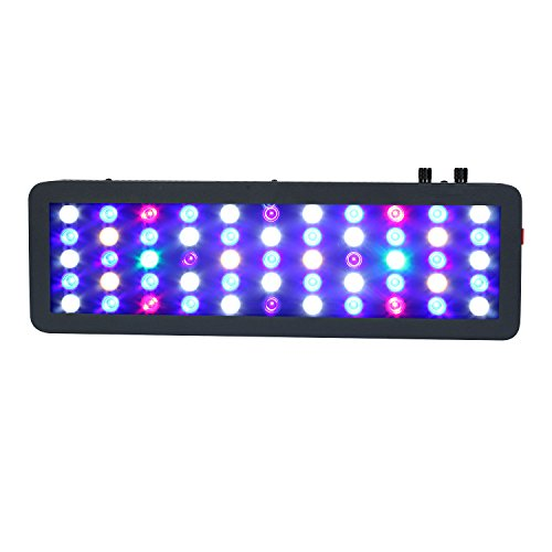 Ocean Revive Led Lights in US - 5