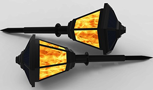 Examples Of Led Light Torches in Florida - 3