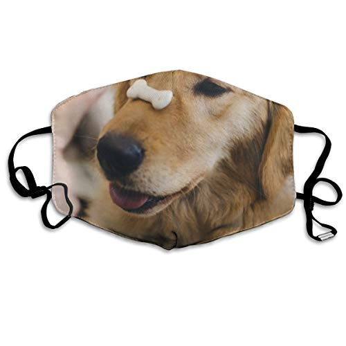 - Thuth Adult Golden Retriever with Cookie Bone On Nose Dust-Proof Washable Mask - Reusable Mask - Suitable for Men and Women's Masks