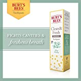 Burt's Bees Toothpaste, Natural Flavor With