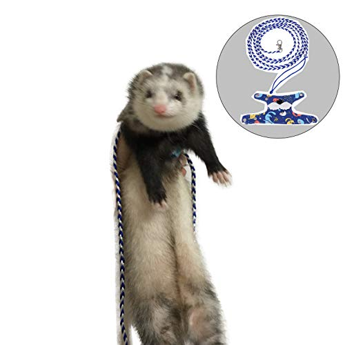 FULUE Baby Ferret Vest Clothes,Small Ferret Accessories Kit Outfit (Vest Harness and Lead)