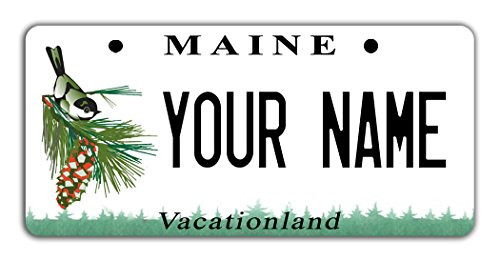 BleuReign Personalize Your Own Maine State Bicycle Bike