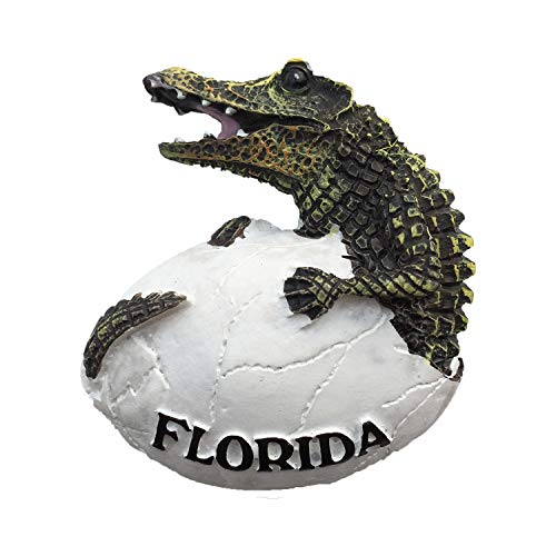 - 3D Crocodile Florida USA Refrigerator Fridge Magnet Tourist Souvenirs Handmade Resin Craft Magnetic Stickers Home Kitchen Decoration Travel Gift