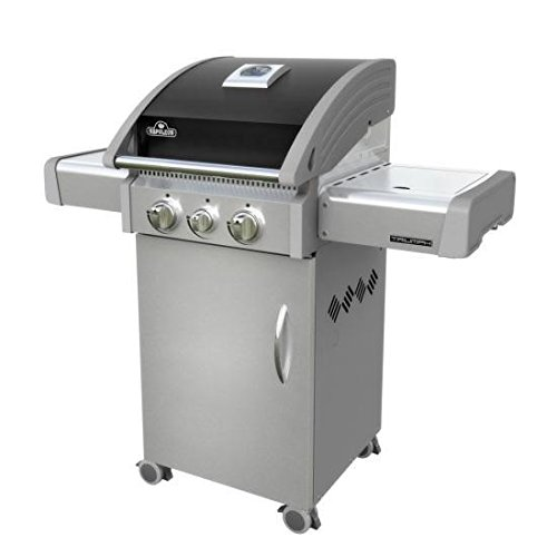 Napoleon T325SBPK Triumph Propane Grill with 2 Burners, Black and Stainless Steel