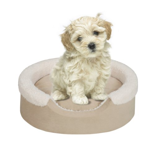 Soft Touch Cuff Oval Cuddler Tan 18×14″ inches, My Pet Supplies