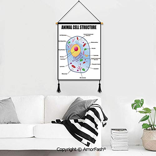 Wall Chart Dorm Room Decoration,Educational for Homes Canvas Prints Pictures Wall Microbiology Theme Animal Cell Structure Genetic Research School Study Science Decorative