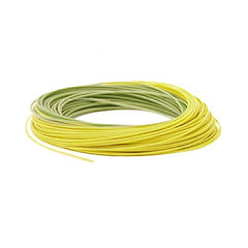 RIO Gold Weight Forward Fly Lines - Enviro 5 Pack - Moss/Gold by Unknown