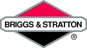 BRIGGS AND STRATTON 193016GS MANUAL-OPERATOR