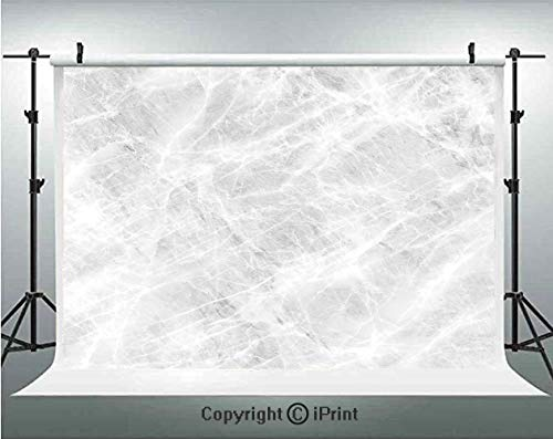 Marble Photography Backdrops Abstract Soft Pastel Toned Onyx Stone Background with Grunge Effects Image Decorative,Birthday Party Background Customized Microfiber Photo Studio Props,7x5ft,Light Grey W ()