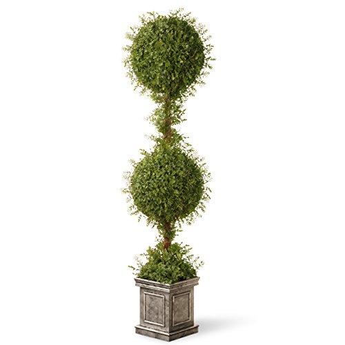 National Tree 60 Inch Mini Tea Leaf Two Ball Topiary in Silver Square Pot (LTLM4-701-60) by National Tree Company