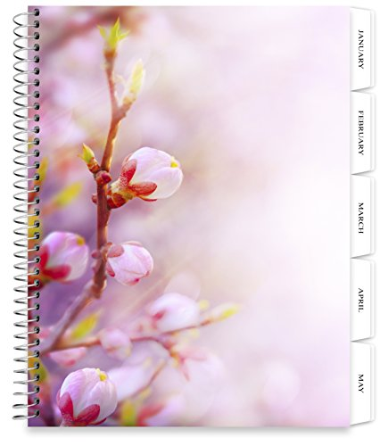 Tools4Wisdom Planners 2018 Planner - 8.5 x 11 Softcover - Dated 2018 Calendar Year - Daily Weekly Monthly Yearly Day Planner (Spiral Bound with Tabs - Pink Blossoms Cover)