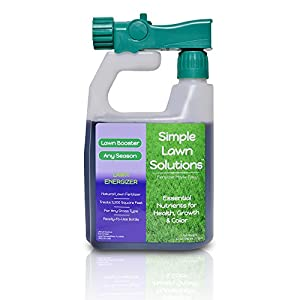 Commercial Grade Lawn Energizer- Grass Micronutrient Booster w/ Nitrogen- Natural Liquid Turf Spray Concentrated Fertilizer- Any Grass Type, All Year- Simple Lawn Solutions- 32 Ounce