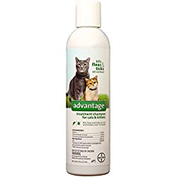 Advantage Treatment Shampoo for Cats & Kittens 8 oz