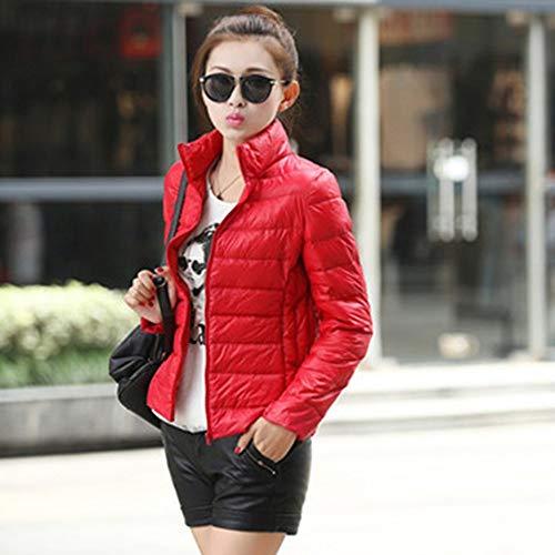 Erduo Femmes Coton Manteau Femme Lger Veste Courte Coton Couleur Unie Manteau Veste Ouate Vtement Extrieur pour l'hiver