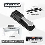 Donner DSP-003 Universal Sustain Pedal with