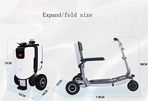 Amazon.com: Caja de viaje portátil plegable para patinete ...