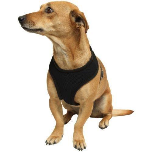 11 opinioni per Ducomi® Snoopy pettorina regolabile e confortevole per cani e cuccioli (L,