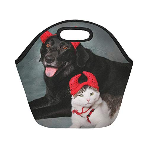 Insulated Neoprene Lunch Bag Cat And Dog Wearing Devil Halloween Costumes Large Size Reusable Thermal Thick Lunch Tote Bags For Lunch Boxes For Outdoors,work, Office, School -