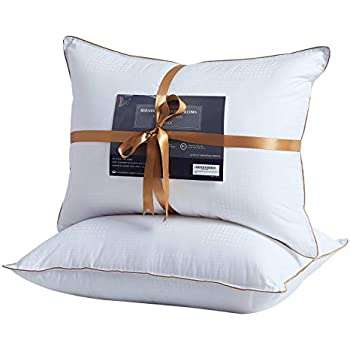 Amazon Com Bellagio 400 Thread Count Queen Pillows 2