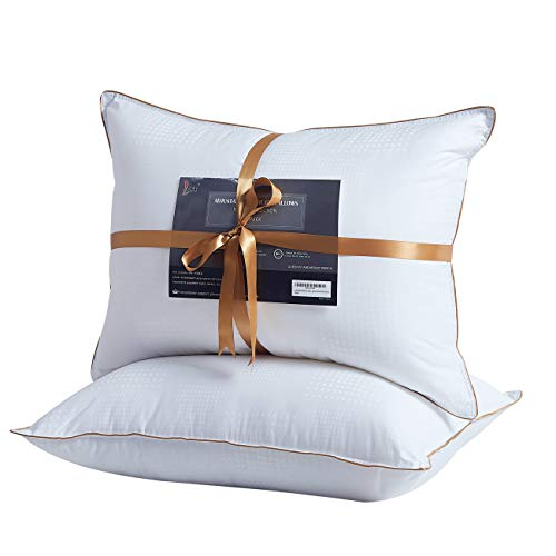 Back 2 Bed (Lofe Bed Pillows for Sleeping, Goose Down Alternative Pillow 2 Pack, Super Soft Plush Fiber Fill, Adjustable Loft, Relief for Neck Pain, for Side and Back Sleeper (Queen, Raindrop White))