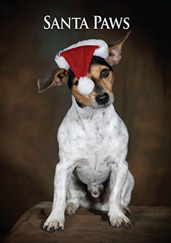 Jack Russell Terrier Christmas Card. Large A5 Seasonal Greeting Card with Scarlet Envelope. Perfect for Dog Lovers