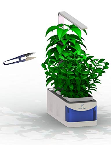 Blue Tree Ltd Hydroponics Indoor Smart Herb Garden with LED Lights and Pruning Shears | Growing System for Herbs, Vegetables, Flowers | Water Shortage Alarm | Automated On-Off Functions
