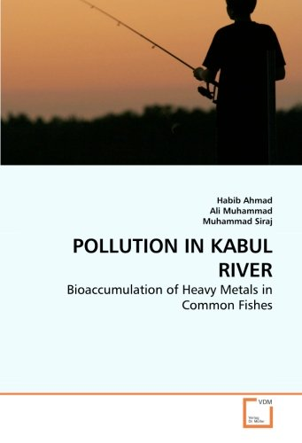 POLLUTION IN KABUL RIVER: Bioaccumulation of Heavy Metals in Common Fishes ebook