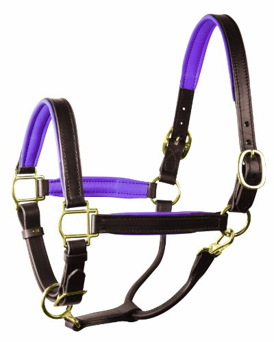 Perri's Horse Soft Padded Leather Halter, Havana/Purple