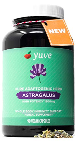 (Yuve Astragalus Root 1500 mg Supplement - Whole Body Immune Support - Great for Cardiovascular Health, Anti-Aging & Stress Relief - Powerful Antioxidant - Vegan, Natural, Gelatin-Free - 90 Capsules)